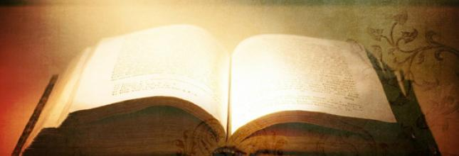 Bible in the Gnosis